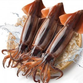 국내산 초콜릿 오징어 4미(마리당 210g내외)